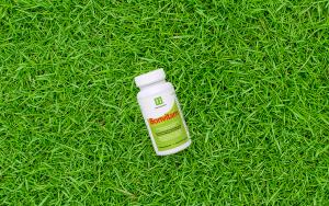 Zou jij je ook weleens energieker willen voelen? Probeer dit supplement!
